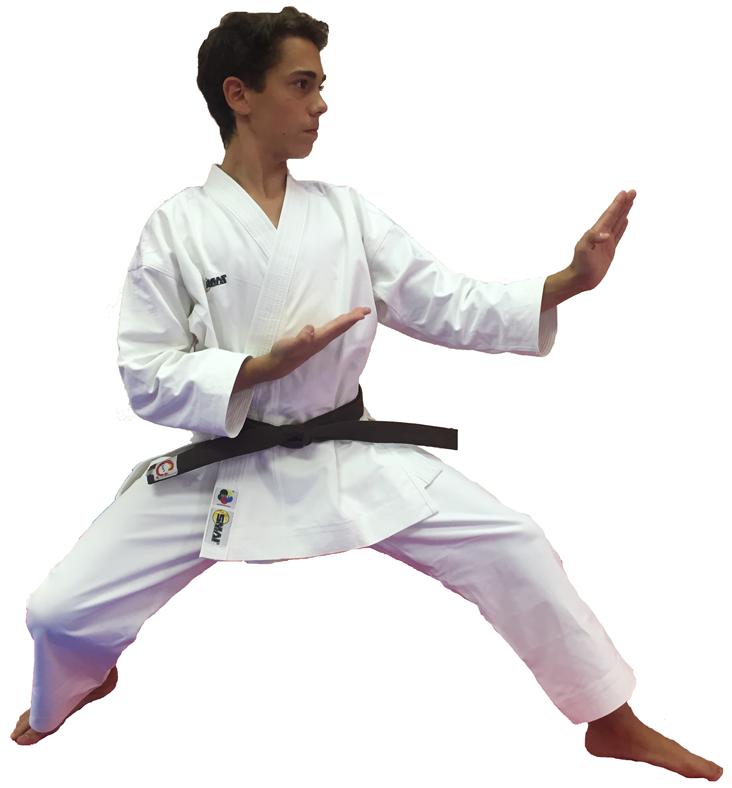 Karategi Arawaza Amber Evolution WKF • Japan Sport Outdoor